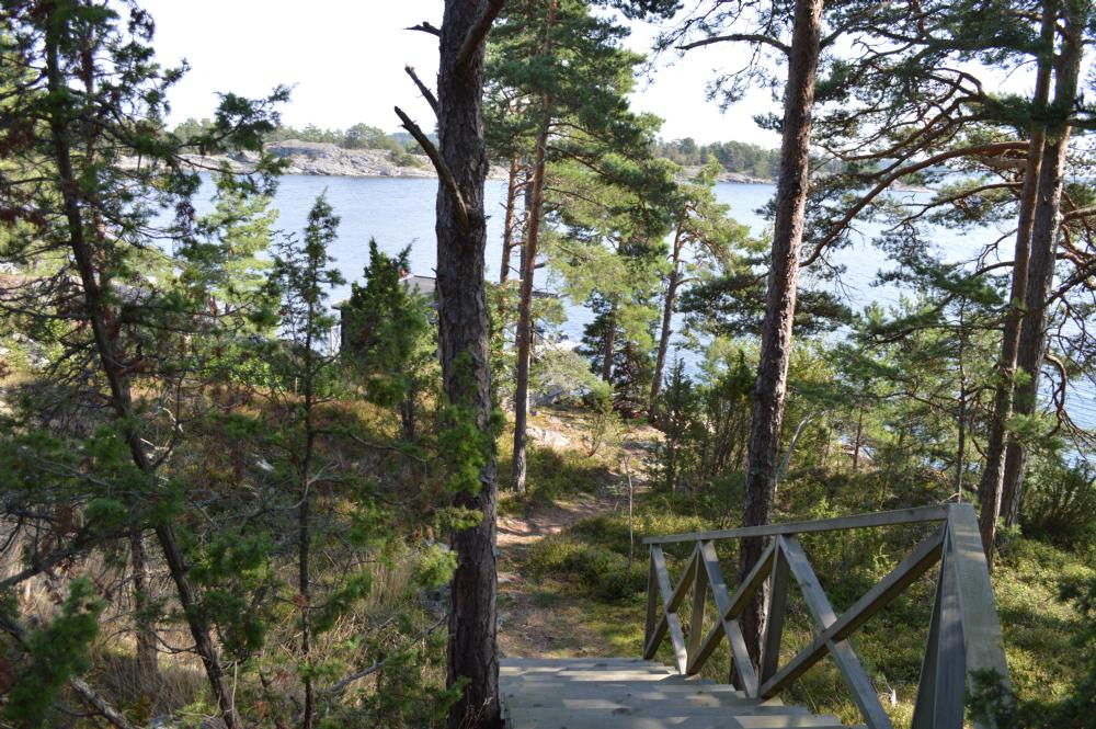 Stig och trappa upp till huset/ Forest path and stairs to the house